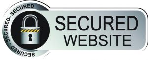 secure website silver sticker